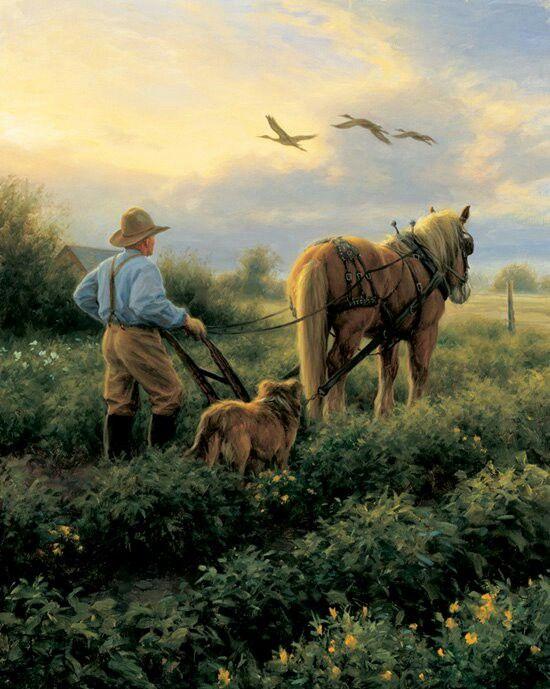 A Farmer And His Dog Arte Country Producao De Arte