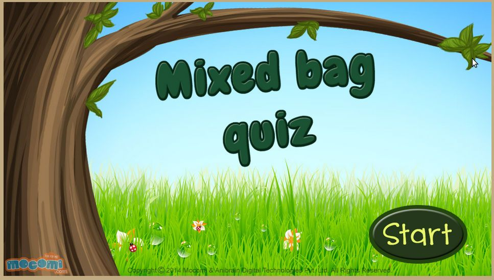 Free Mixed Bag Quiz - Fun Quizzes For Kids