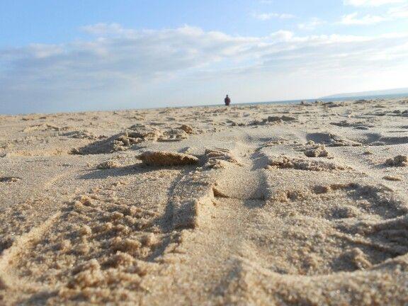 Sand. Sun. Little man.