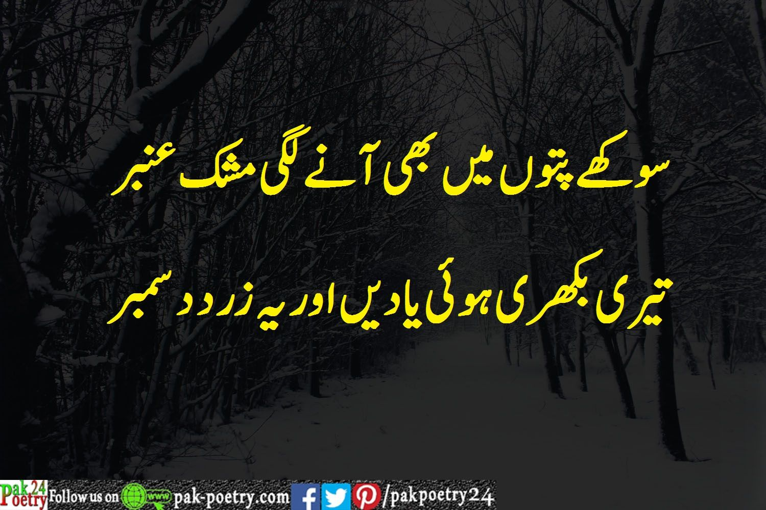 December Poetry Urdu - Top 5 Collection (With images ...