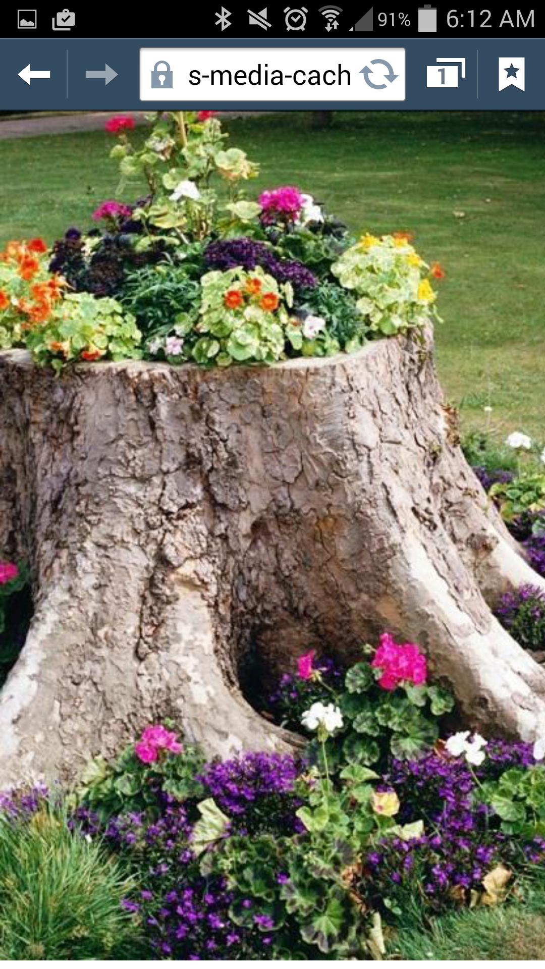 Reuse tree stump for flower garden Front yard Pinterest