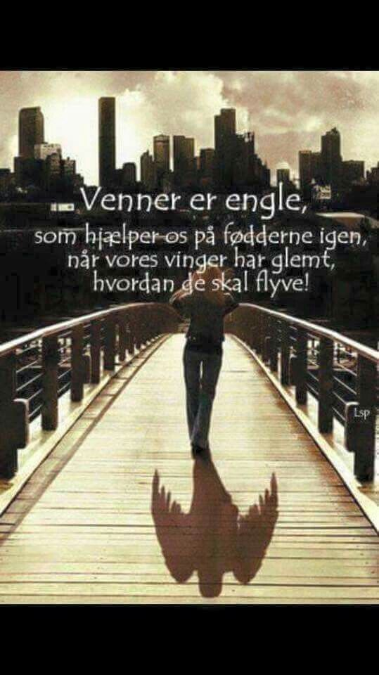 Quotes Venner Engle Citater