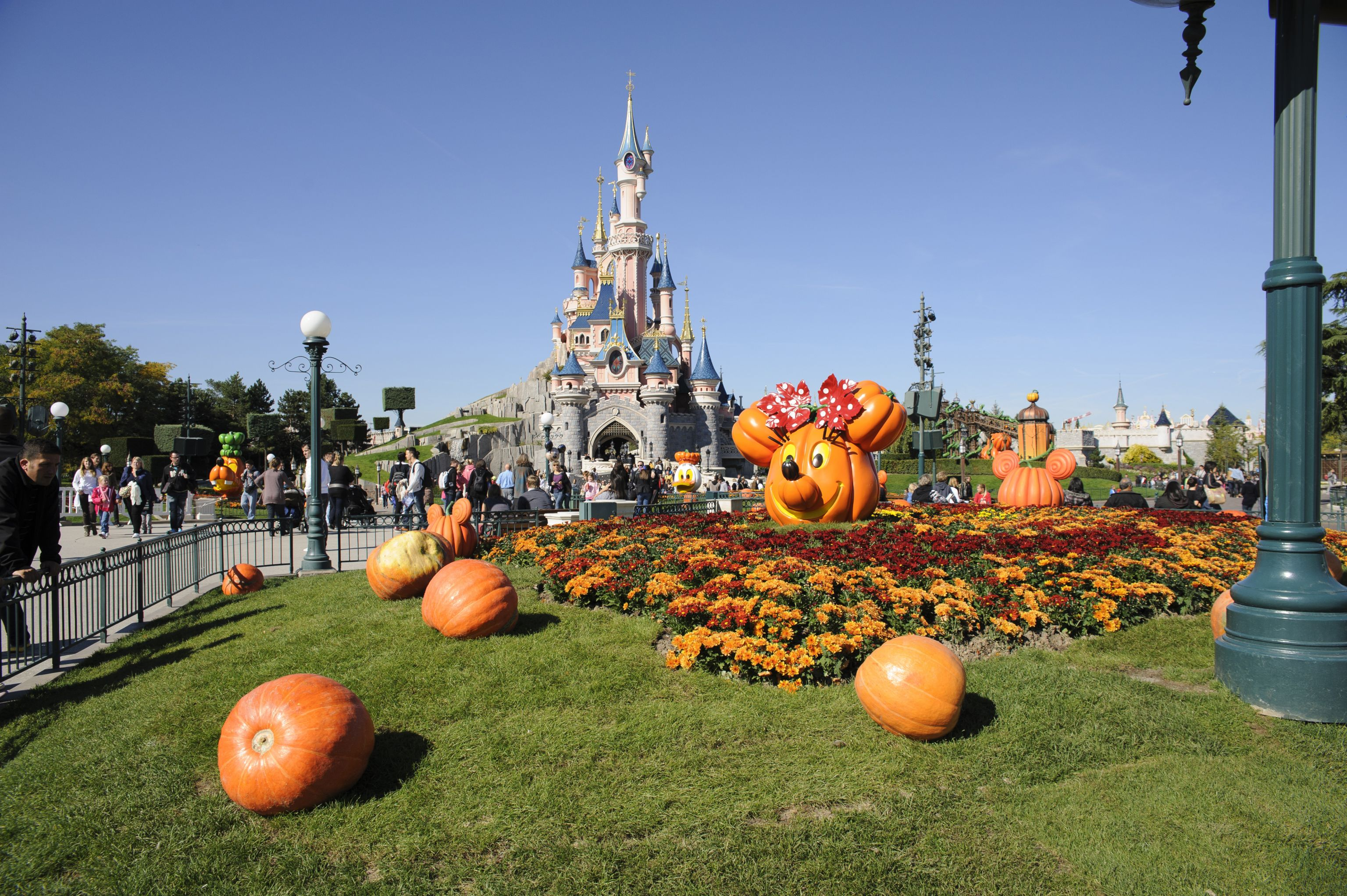 disneyland paris, disney's halloween festival - halloween pumpkins