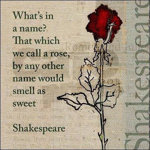 Pin by Adamito on Adam Hernandez   Famous shakespeare