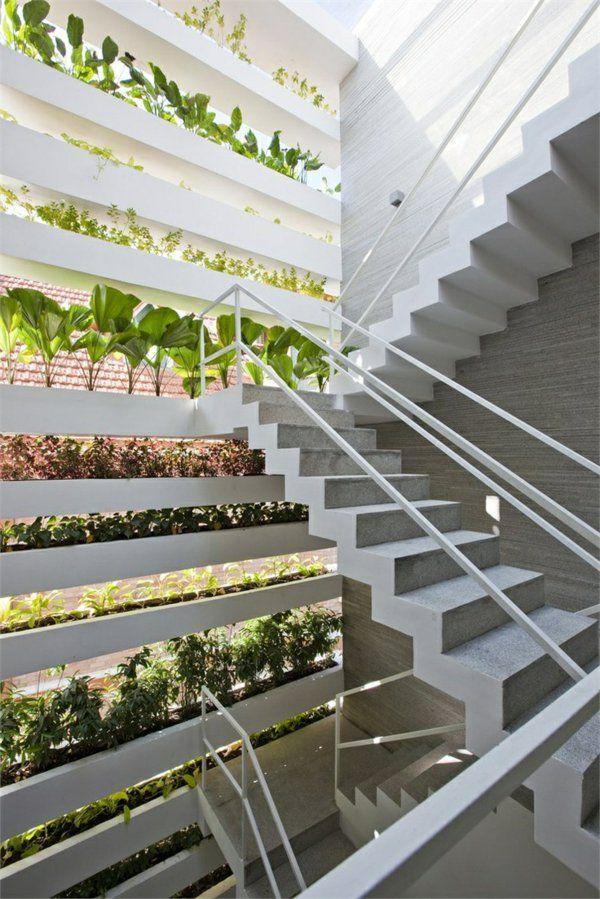 escalier avec plantes vertes