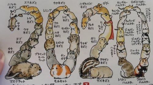 みーこ On Twitter Mutsu Kawaii Comics