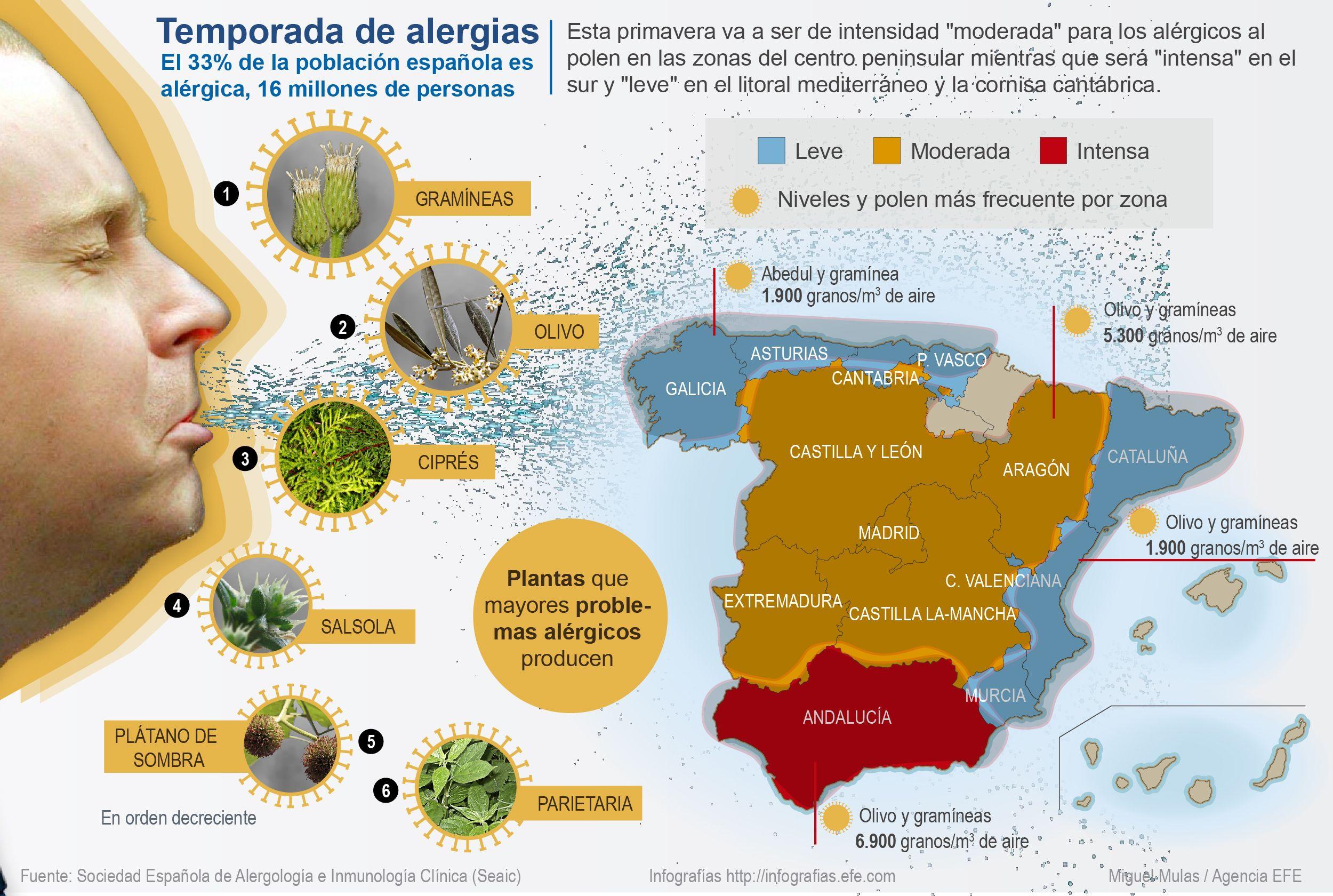 #DeUnVistazo. Temporada de #alergias. http://www.efeverde.com  @deunvistazo @efeverde