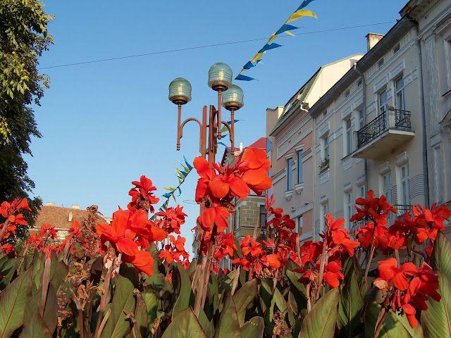 Ternopil, western Ukraine - the city of flowers!  #Ukraine #Ukrainian #Ternopil