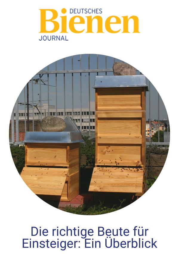 Pin auf Bienen