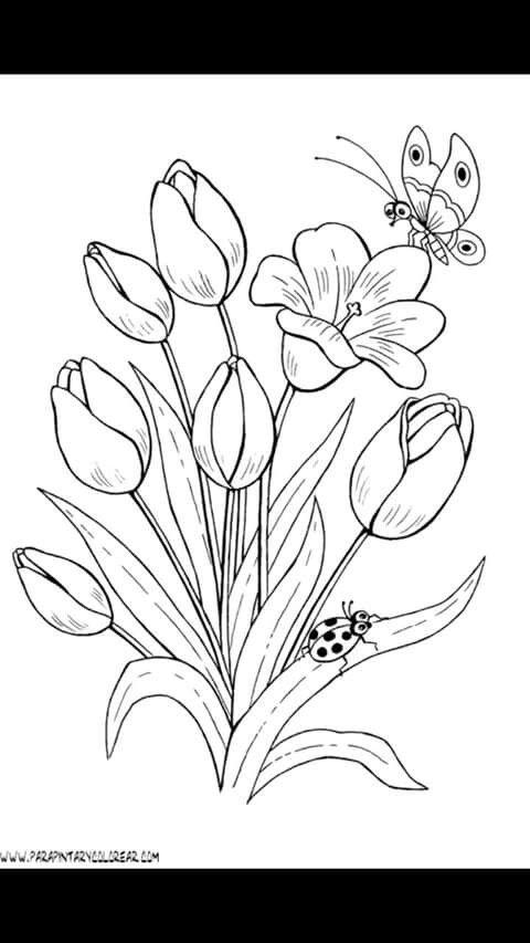 Flores Más | Bordados | Pinterest | Flores, Bordado y Dibujo