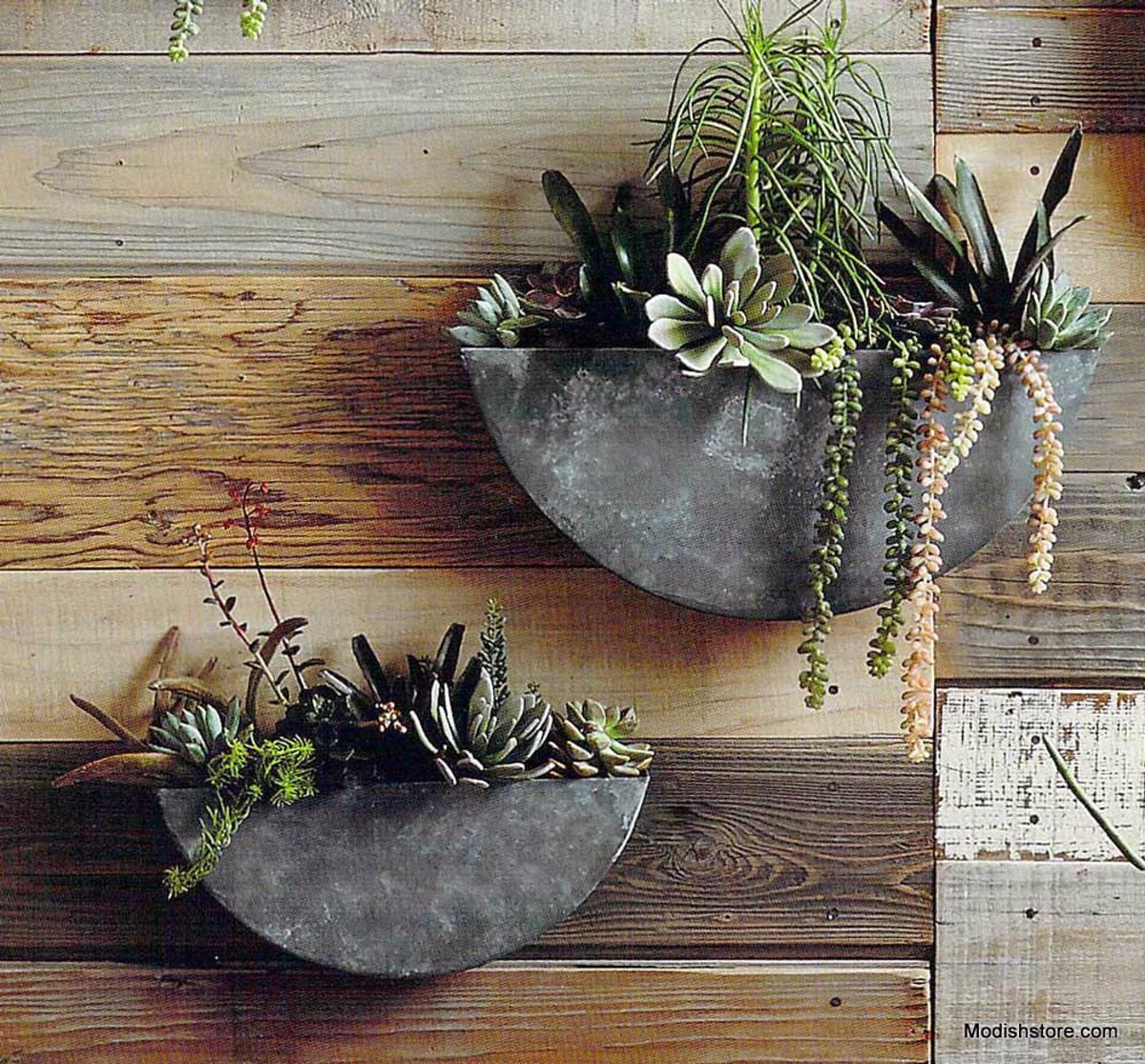 Roost Orbea Zinc Circle Half Circle Wall Planters Succulents For
