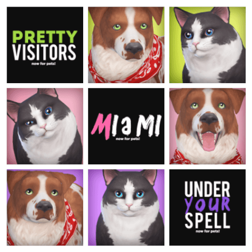 Pet Eyes Pack for The Sims 4 by Pyxis Sims pets, Sims 4