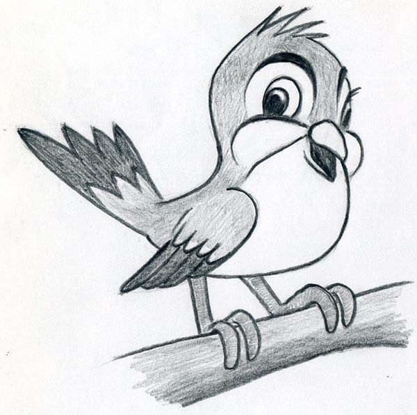 How to draw a bird step by step easy