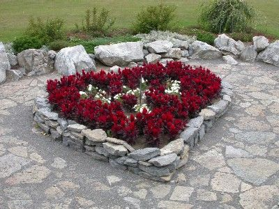 Heart shape flower bed gardening inside and out for Flower bed shapes designs