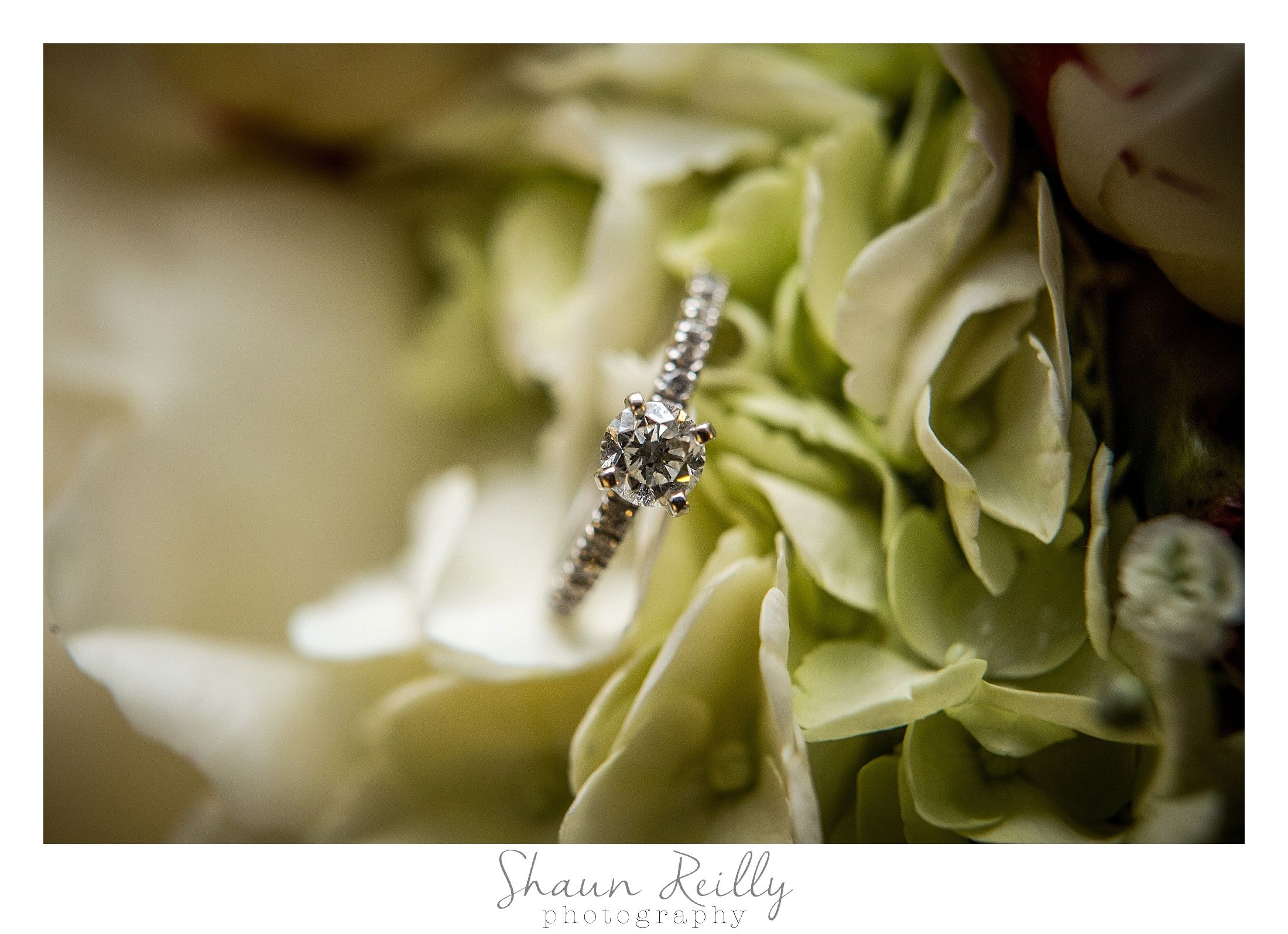 Stephany's engagement ring in her flowers from Annie's Garden.