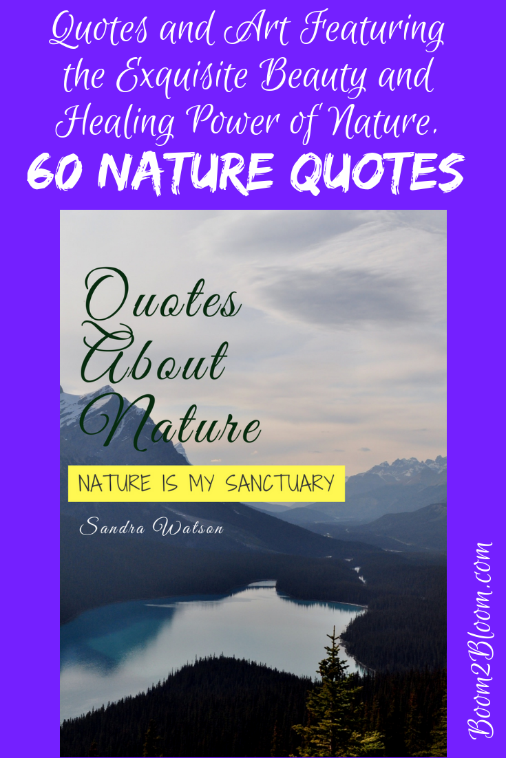 Nature Is My Sanctuary Quotes About Nature Ebook Nature Is My