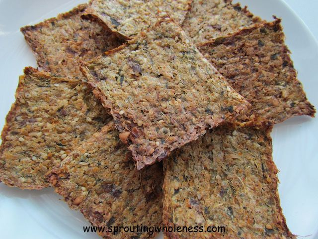 Fruit And Veggie Pulp Crackers Sprouting Wholeness Healthy