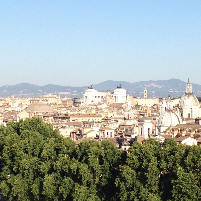 View from Castel' Sant' Angelo. Rome