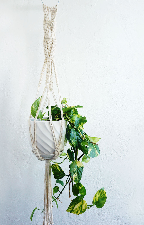 wedding pearl wedding gift wedding decor macrame plant decor Macrame Plant Hanger wedding accessories hanging plant