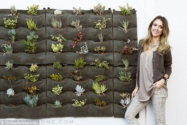 Outdoor indoor: hanging garden made from felt