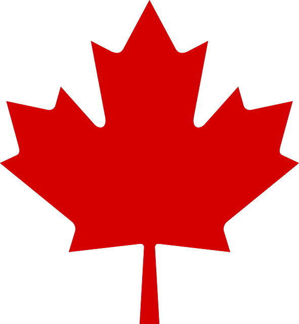 Three Quick Resources About How Maple Syrup Is Made Canada Leaf Canada Flag Canada Maple Leaf