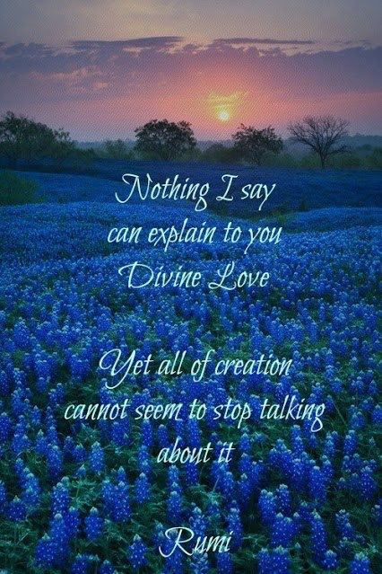 Divine Love Rumi Pinterest Simple Divine Love Quotes