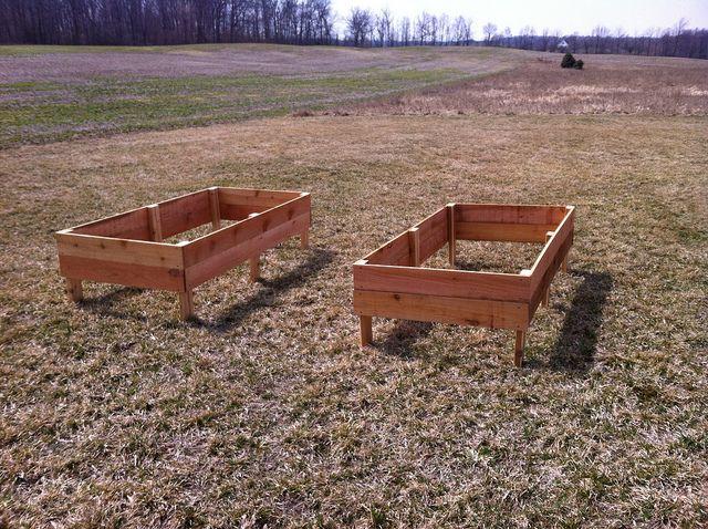 Inexpensive raised garden beds, using cedar fence boards