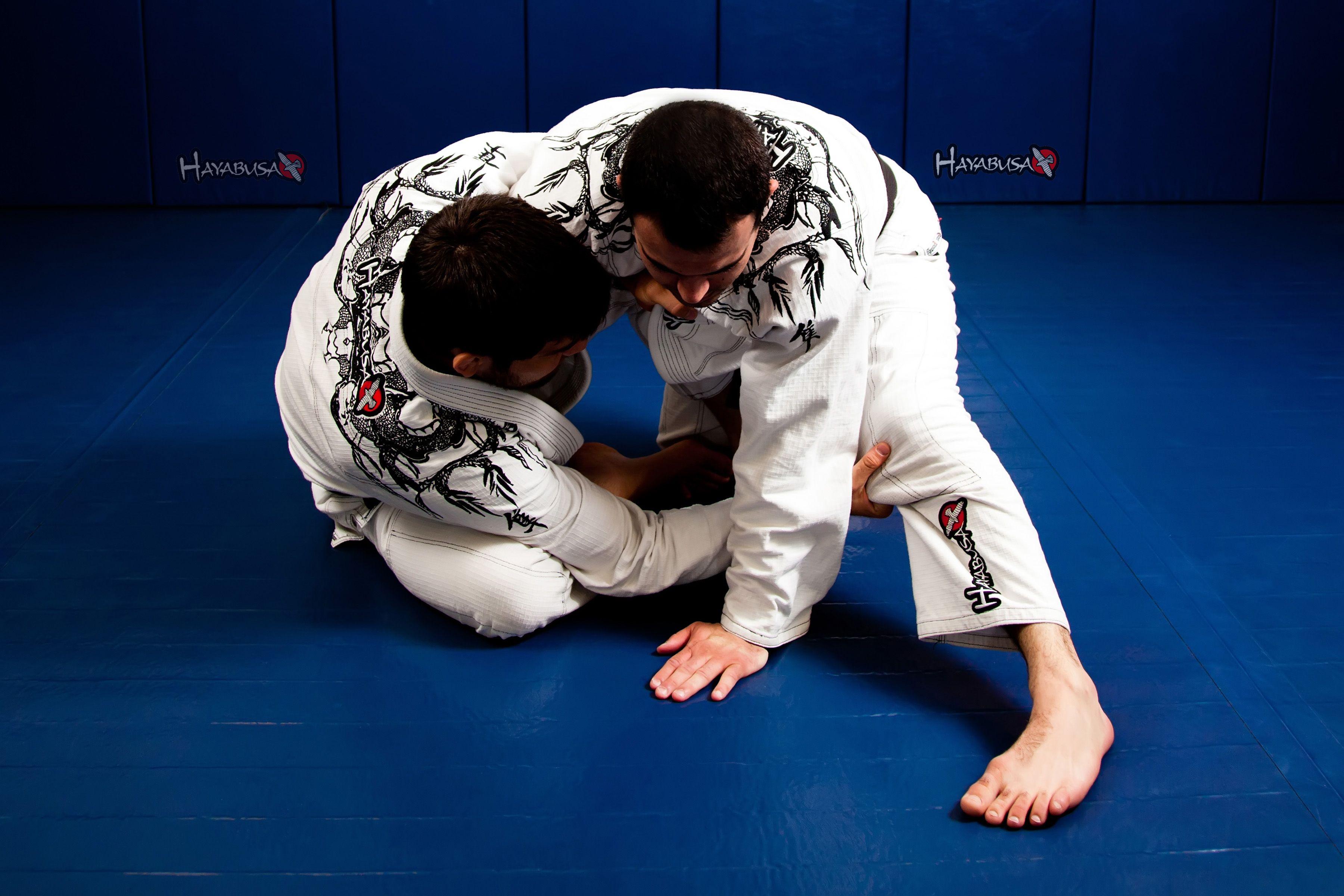 Beginner brazilian jiujitsu program jiu jitsu