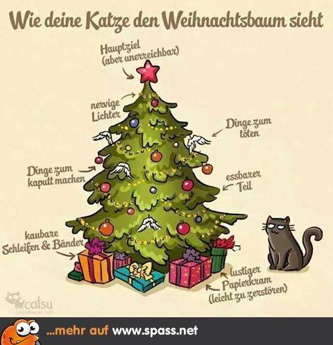 weihnachtsbaum aus katzensicht lustige bilder auf spass. Black Bedroom Furniture Sets. Home Design Ideas