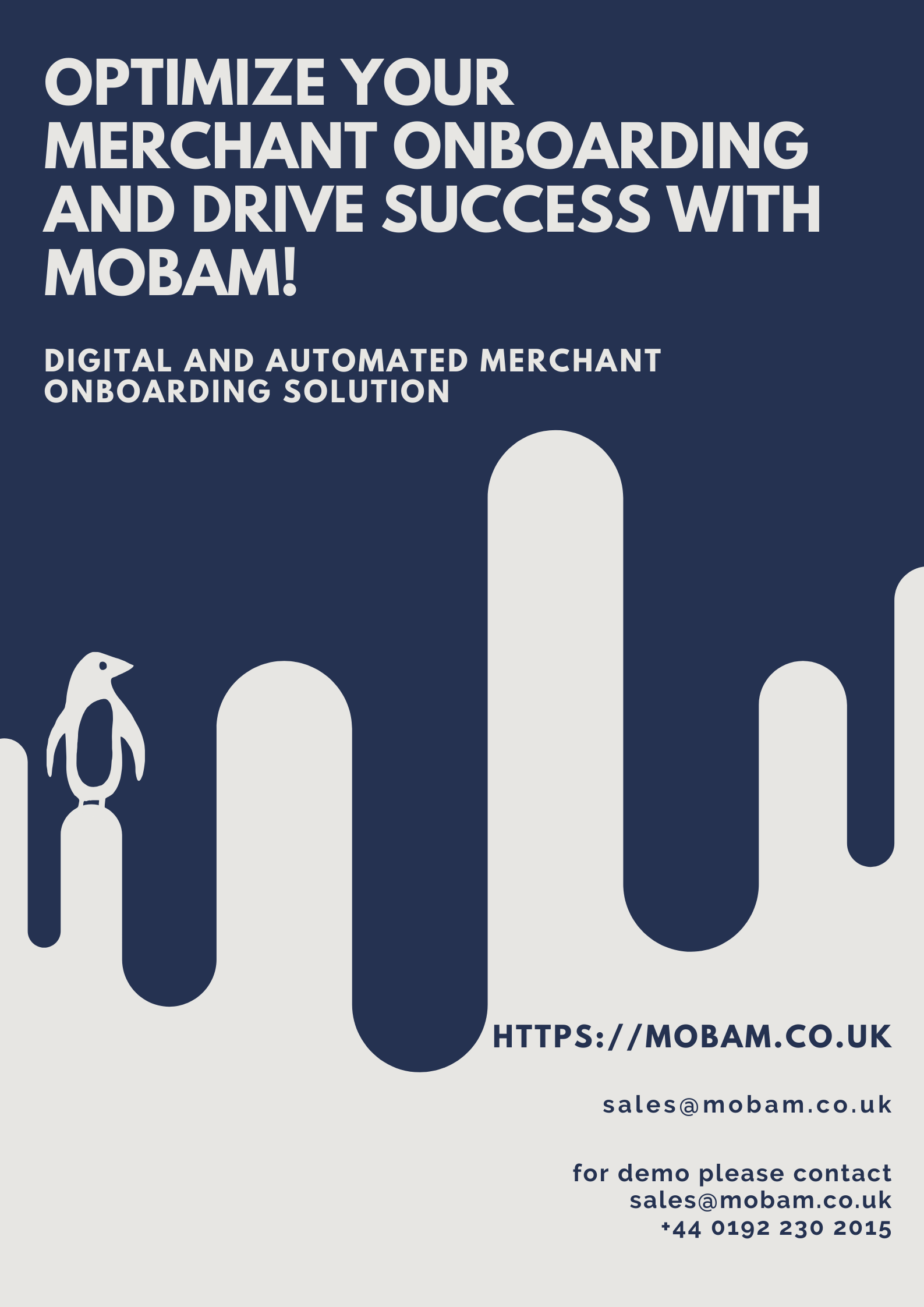 Optimize Your Merchant Onboarding And Drive Success With Mobam Onboarding Optimization Merchants