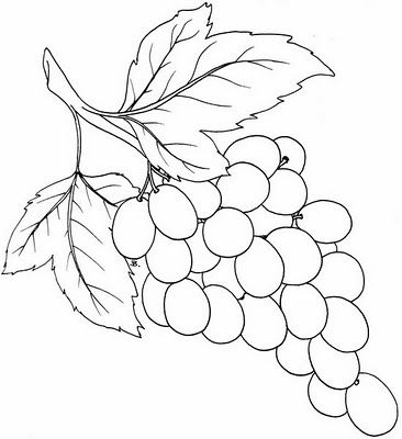Beccy S Place Bunch Of Grapes Grape Drawing Vine Drawing Grape Painting