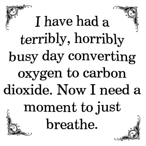 Breathe Biology Jokes Just Breathe Funny Quotes