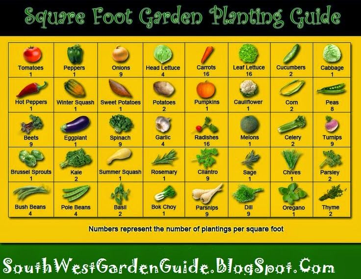 Southern California Garden Guide   Basic Gardening: Mel Bartholomew Square  Foot Garden   Small Space