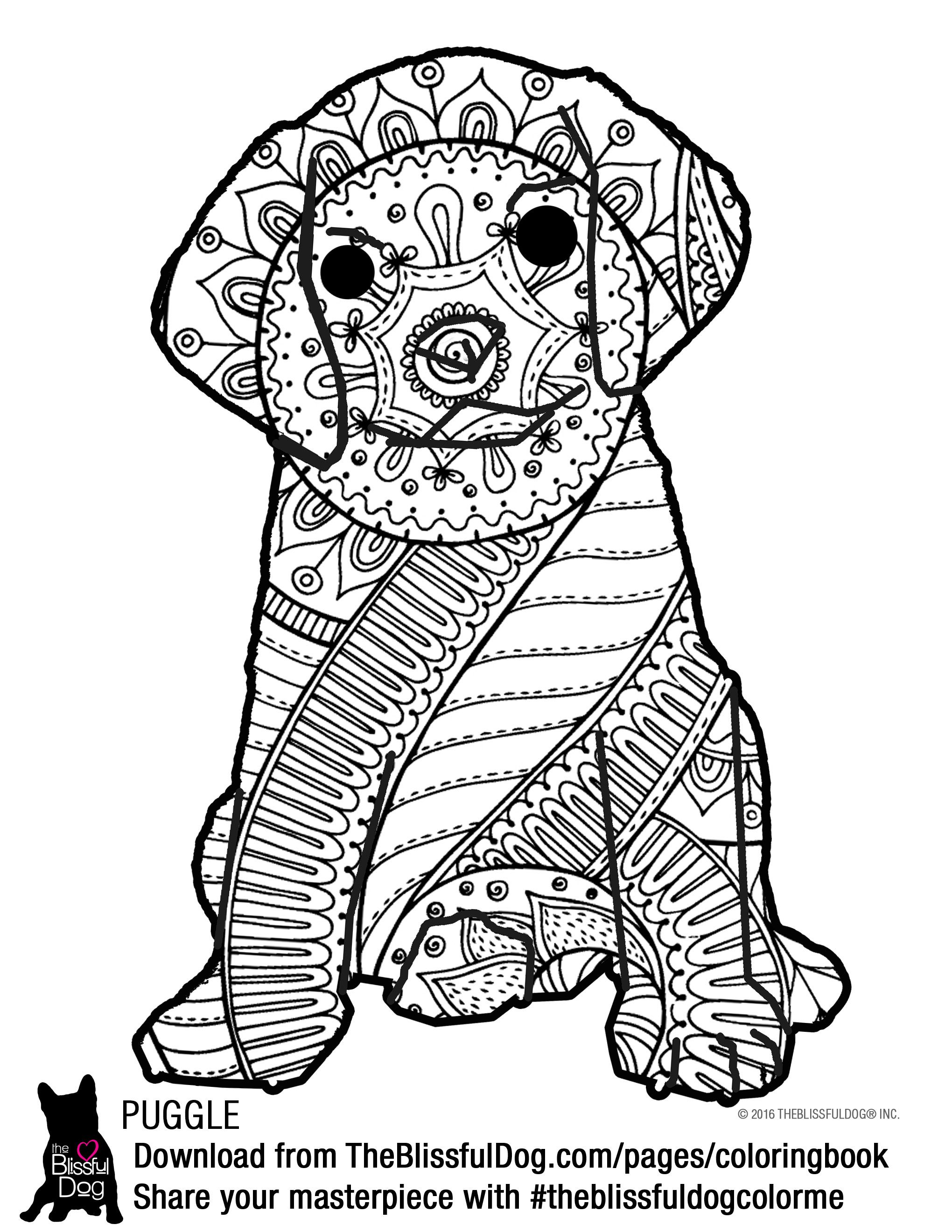 Coloring Book | Coloring books and Adult coloring