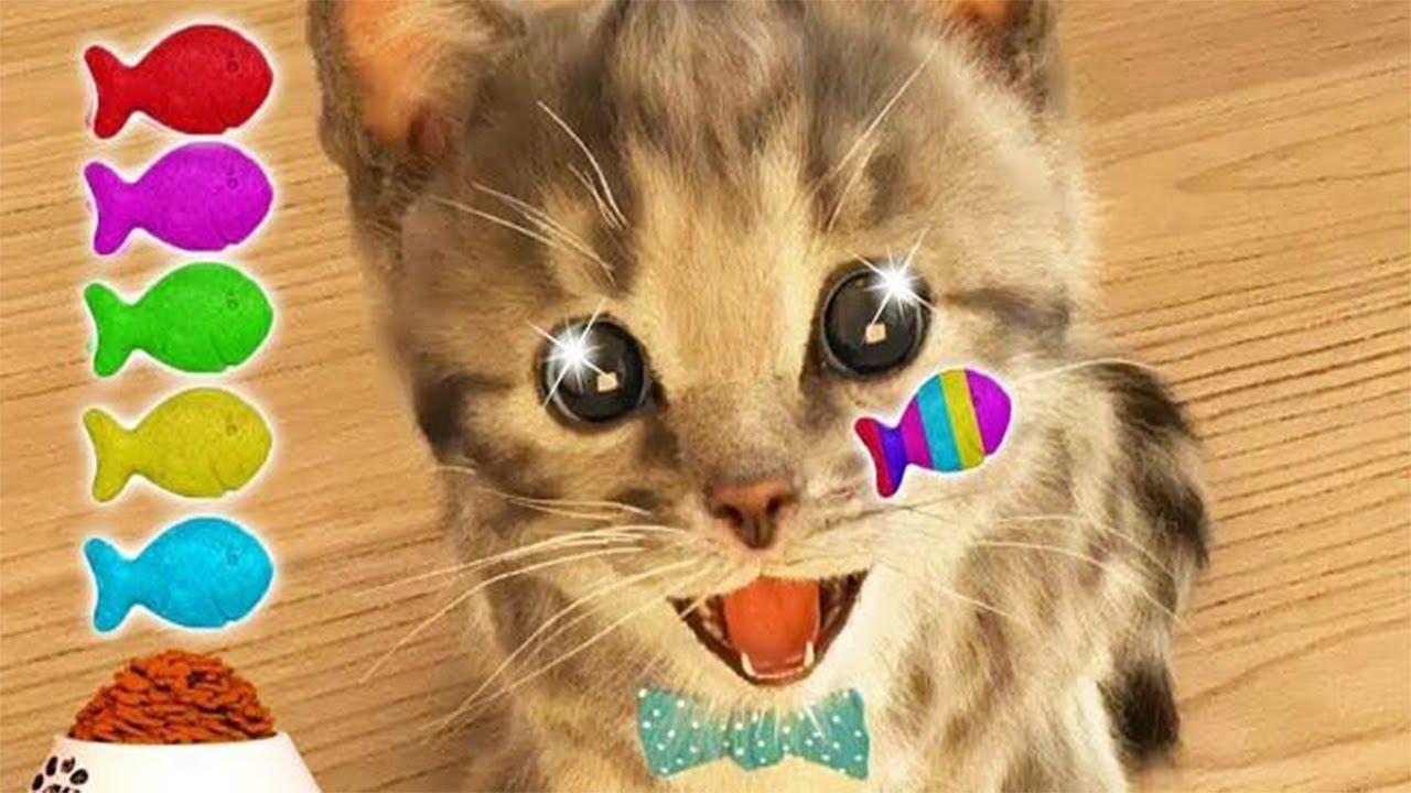 Play Fun Pet Care Kids Game Little Kitten My Favorite Cat Fun Cute Kitte In 2020 Kittens Cutest Cool Pets Cute Kitten Gif
