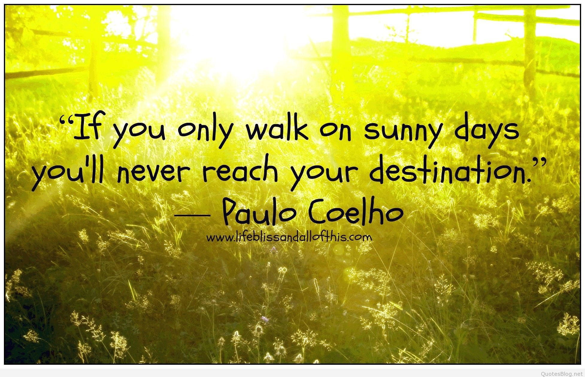 Sunny Day Quotes Sunny Day Flowers | Quotes | Pinterest | Quotes, Sunny day quotes  Sunny Day Quotes