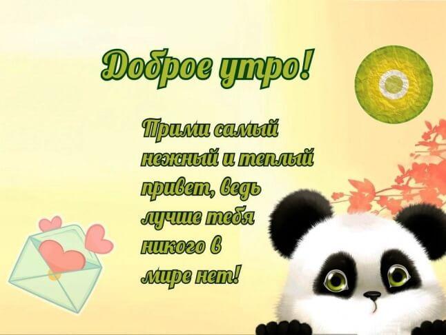 Пожелания любимому с добрым утром и хорошим днём в ...