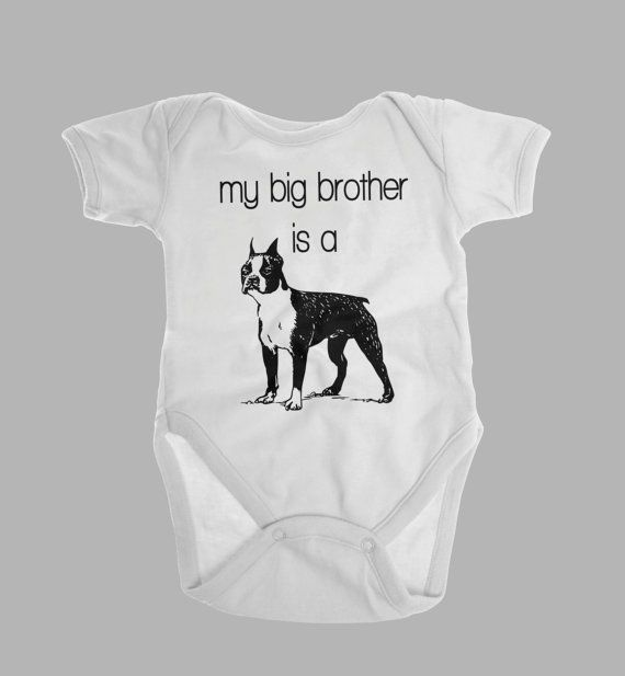 Big Brother or Sister is a Boston Terrier Onesie Clothes Outfit Baby Shower Gift