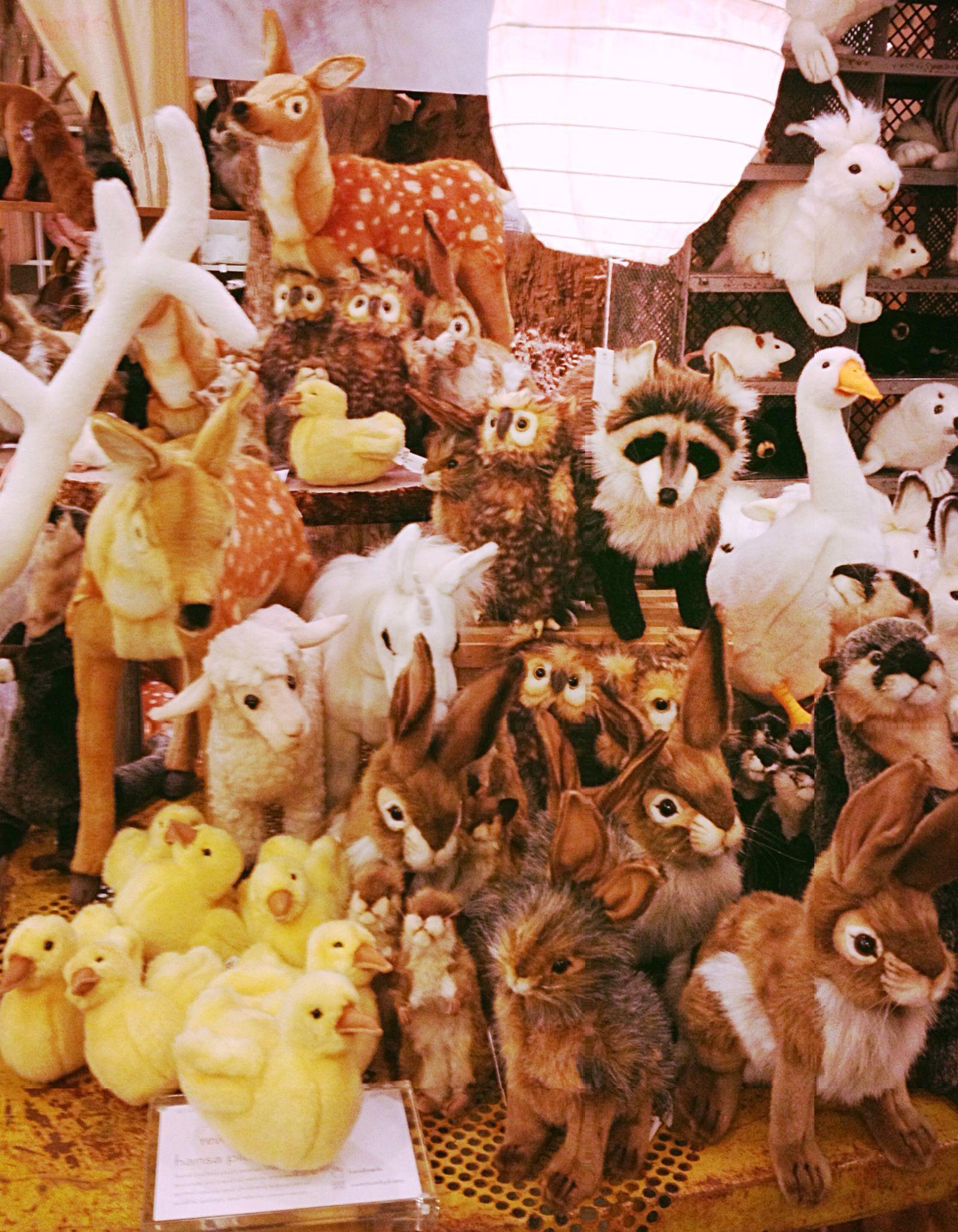 Stuffed animal display at ABC Home & Carpet Stuffed