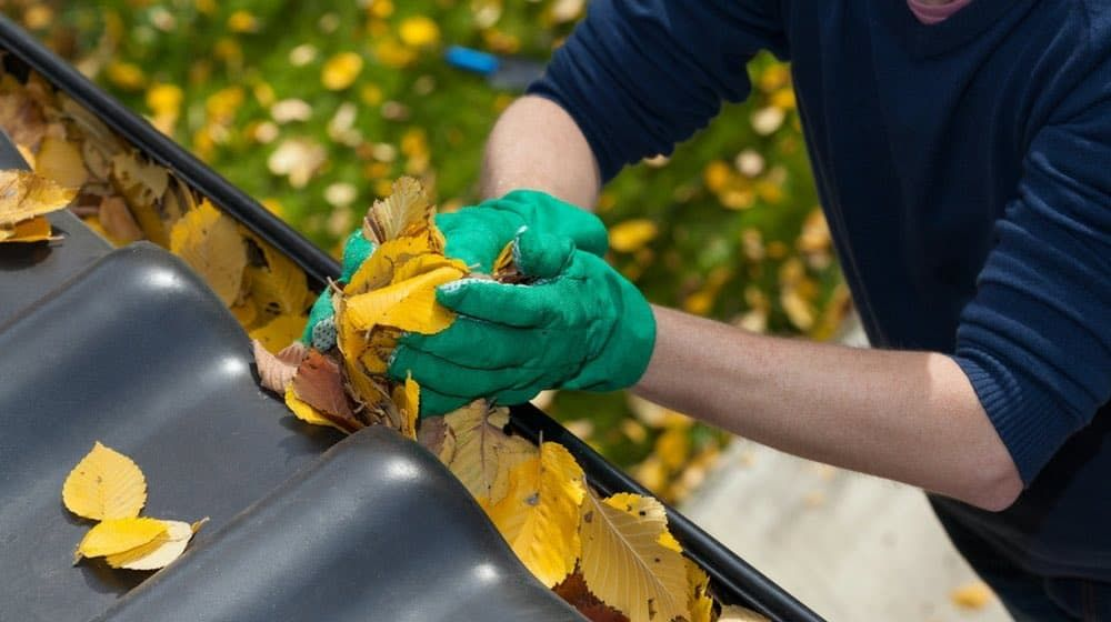 These spring home maintenance tips will bring you a step closer to a cleaner and safer home. Read this to keep the systems in your house up and running.