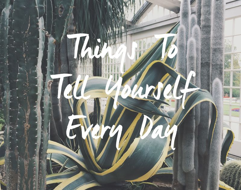 Things To Tell Yourself Every Day — From Roses