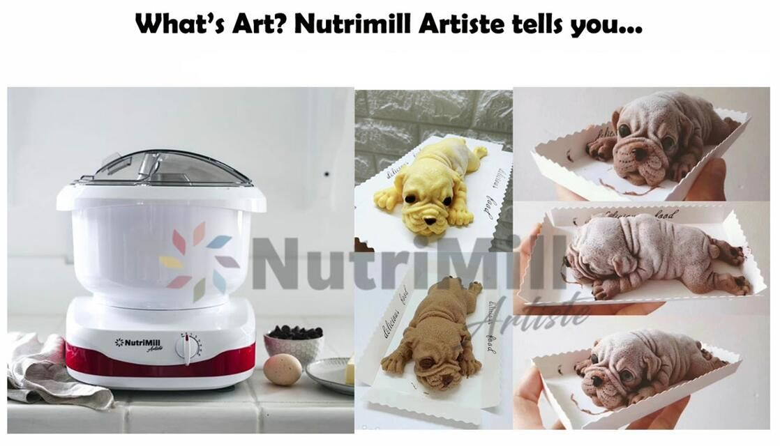 nutrimill artiste mixer reviews
