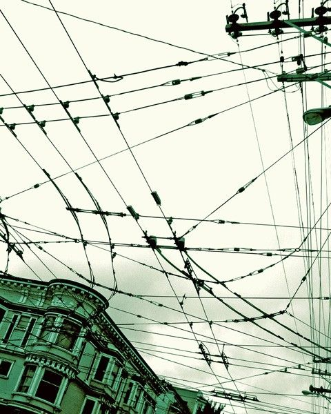 City Wires Photo By Michelle Yap