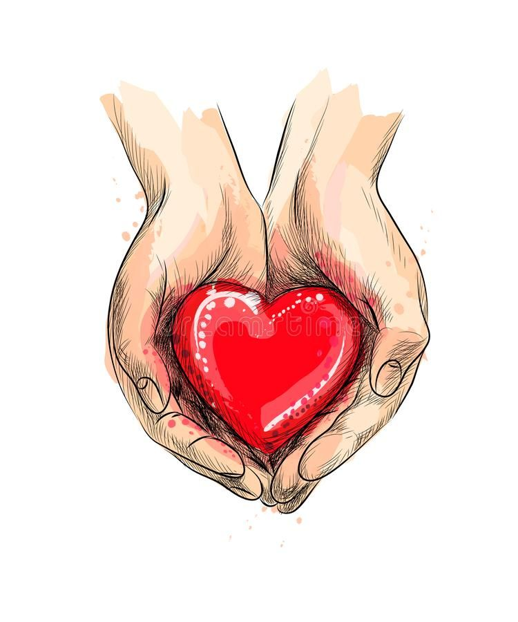 Female Hands Giving Red Heart From A Splash Of Watercolor Hand Drawn Sketch Vector Ill Valentines Illustration Valentines Day Drawing Love Heart Illustration