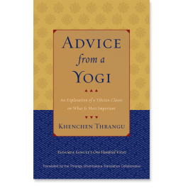 Advice From A Yogi An Explanation Of A Tibetan Classic On What Is Most Important Advice Spiritual Path Books To Read