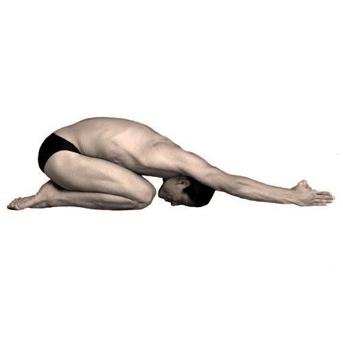 Half Tortoise Pose Ardha Kurmasana Sanskrit Yoga Bikram Yoga Yoga Postures