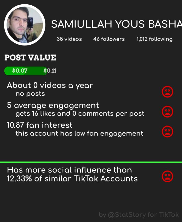 View Any Tiktok Account With Statstory Social Influence Fan Engagement Accounting