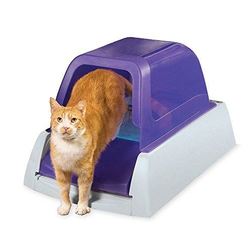 Pin by Gbschnepp on CATS Best litter box, Self cleaning