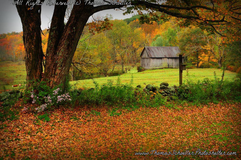 05f9c0c1fda3bd7c1977e55517d95378 - Quintessential Gardens At Fort Hill Farms