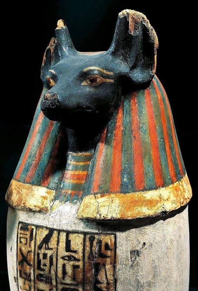 Pseudo Canopic Jar With The Jackal Head Of The God Duamutef One Of